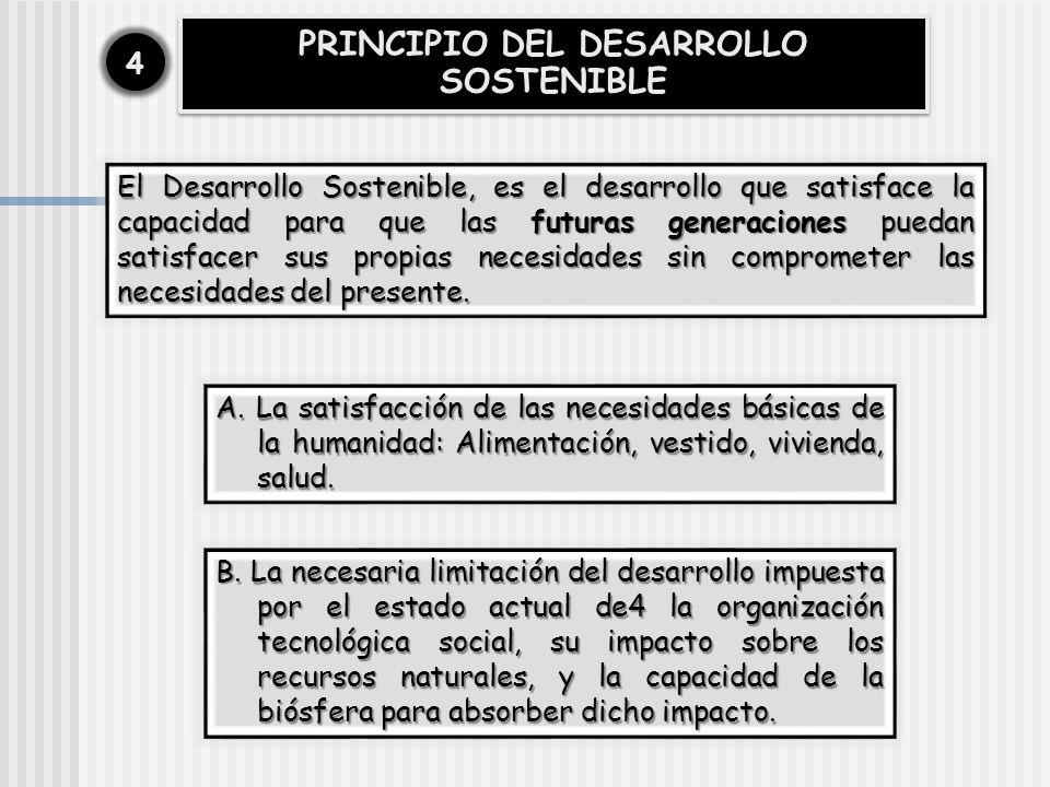 PRINCIPIO DEL DESARROLLO SOSTENIBLE