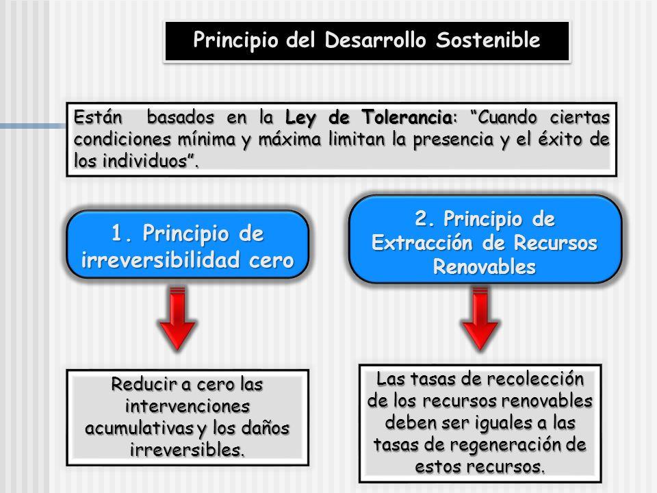 Principio de irreversibilidad cero