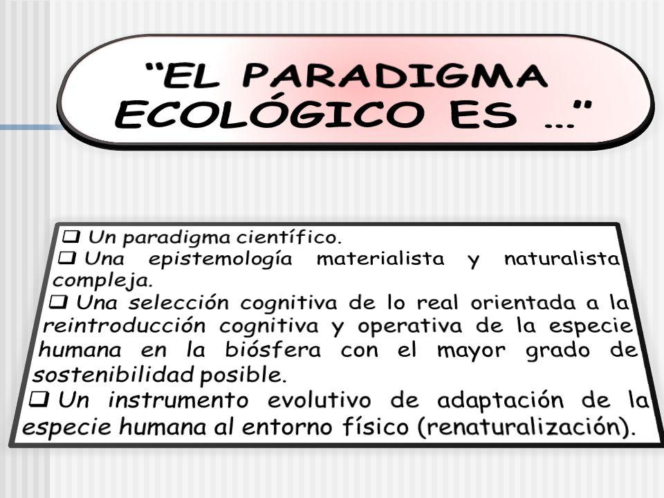 EL PARADIGMA ECOLÓGICO ES …