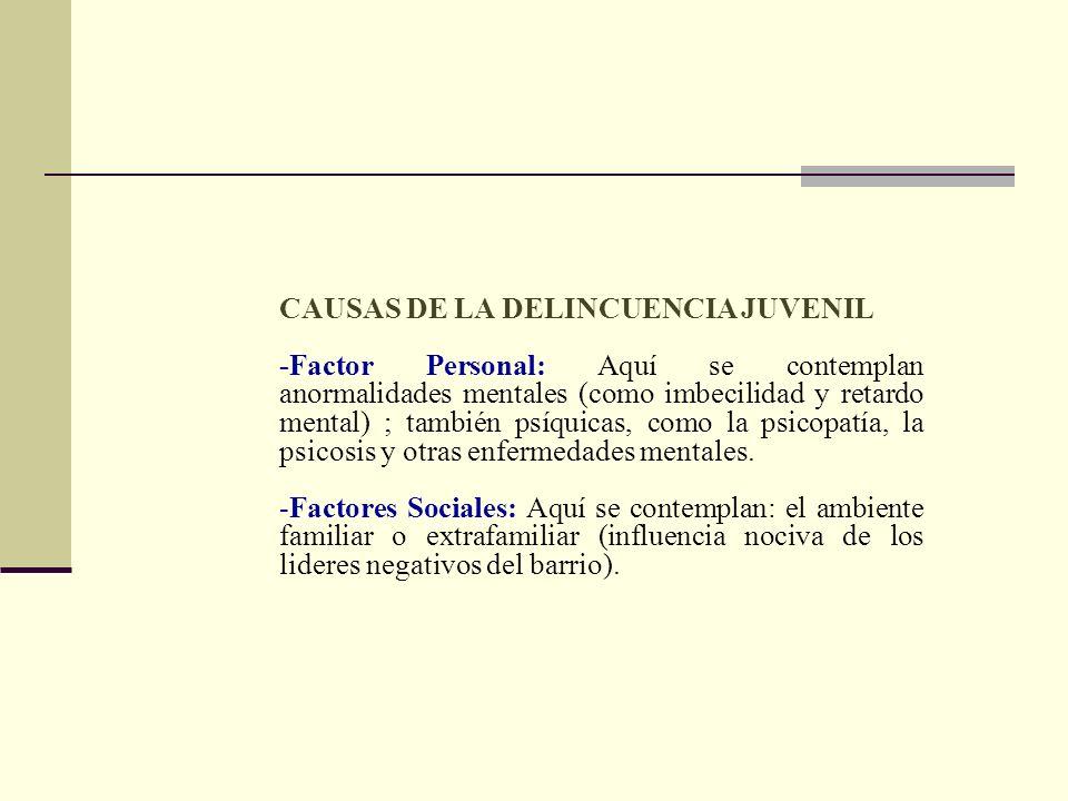 CAUSAS DE LA DELINCUENCIA JUVENIL