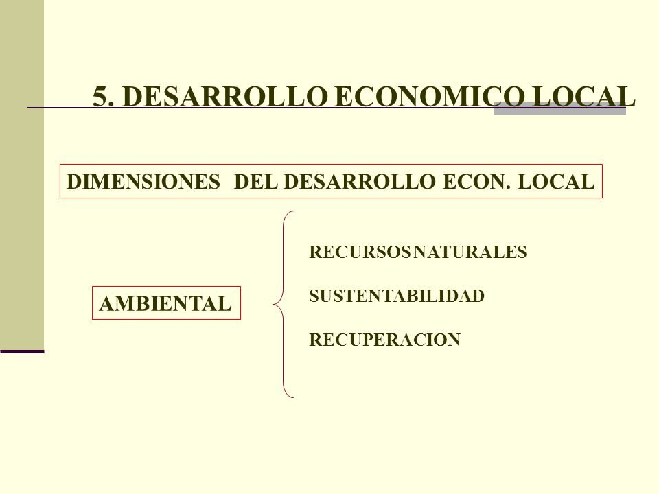 5. DESARROLLO ECONOMICO LOCAL