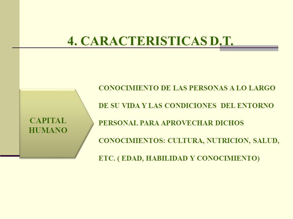 4. CARACTERISTICAS D.T. CAPITAL HUMANO