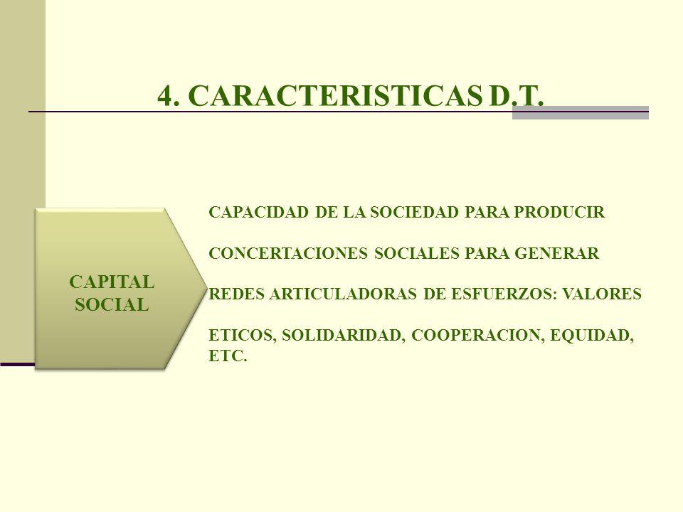 4. CARACTERISTICAS D.T. CAPITAL SOCIAL