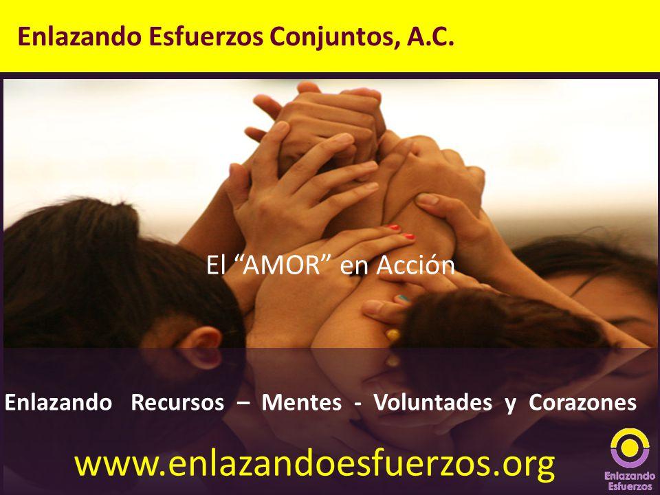 www.enlazandoesfuerzos.org Enlazando Esfuerzos Conjuntos, A.C.