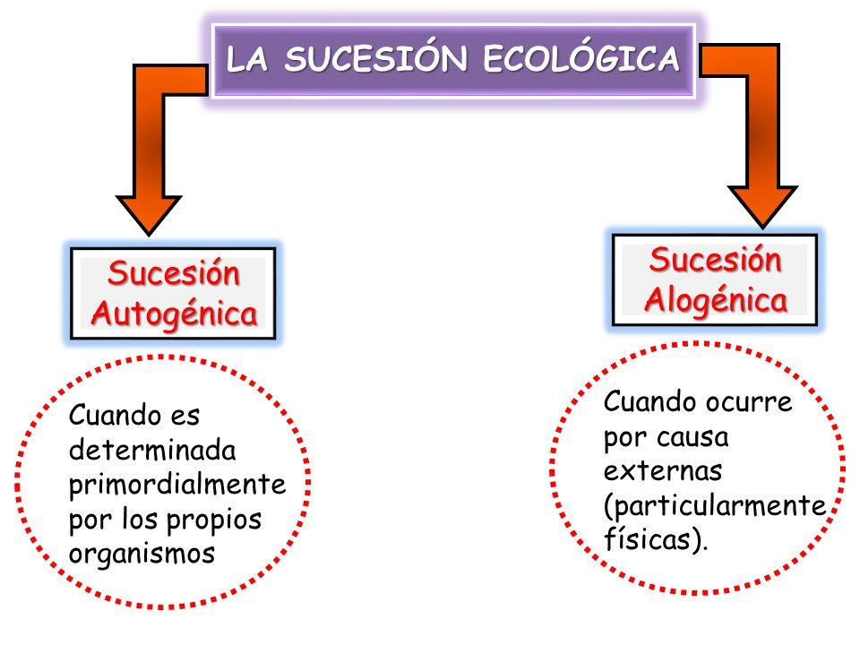 LA SUCESIÓN ECOLÓGICA Sucesión Sucesión Alogénica Autogénica
