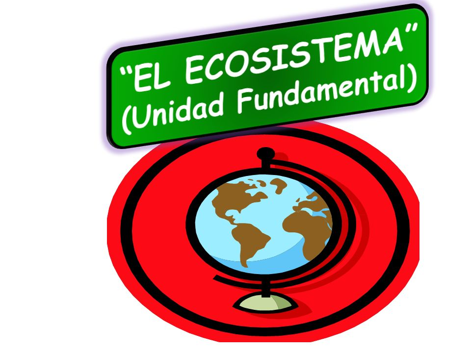 EL ECOSISTEMA (Unidad Fundamental)