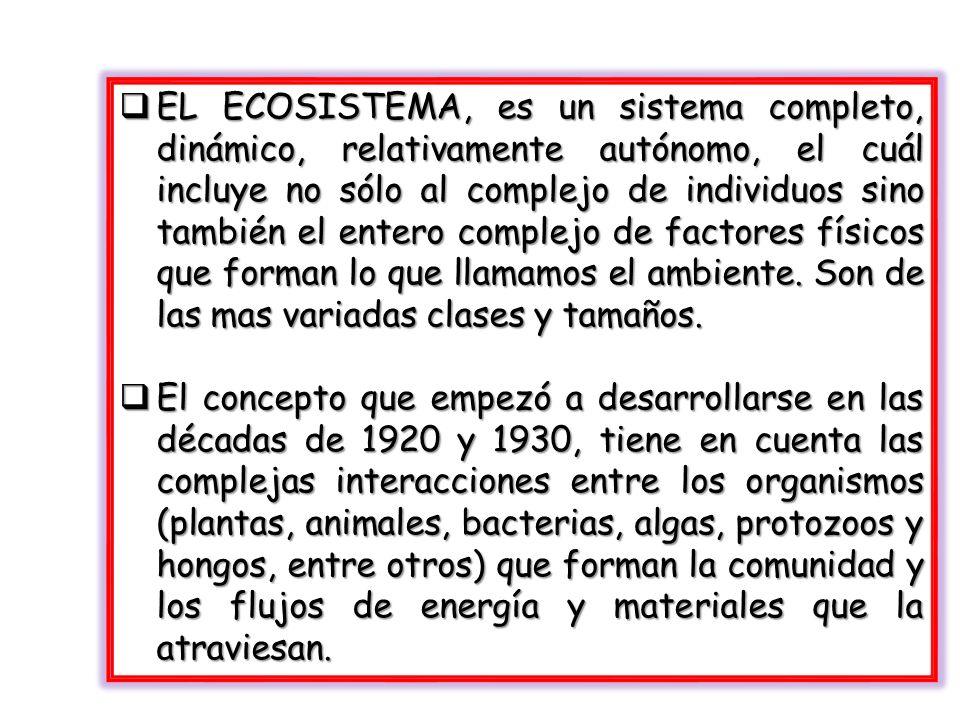 EL ECOSISTEMA, es un sistema completo, dinámico, relativamente autónomo, el cuál incluye no sólo al complejo de individuos sino también el entero complejo de factores físicos que forman lo que llamamos el ambiente. Son de las mas variadas clases y tamaños.