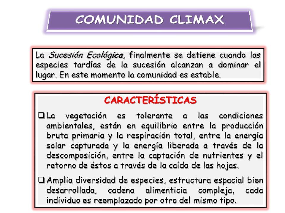 COMUNIDAD CLIMAX CARACTERÍSTICAS