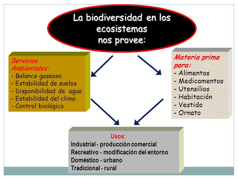 La biodiversidad en los ecosistemas
