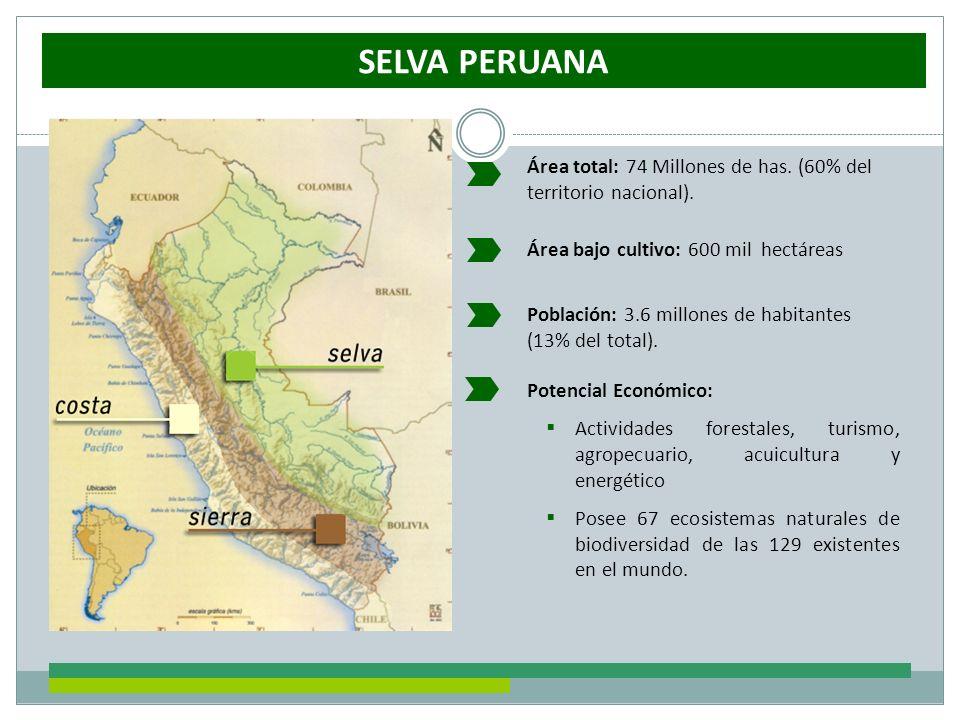 SELVA PERUANA Área total: 74 Millones de has. (60% del territorio nacional). Área bajo cultivo: 600 mil hectáreas.