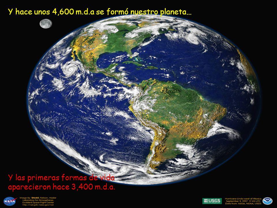 Y hace unos 4,600 m.d.a se formó nuestro planeta…