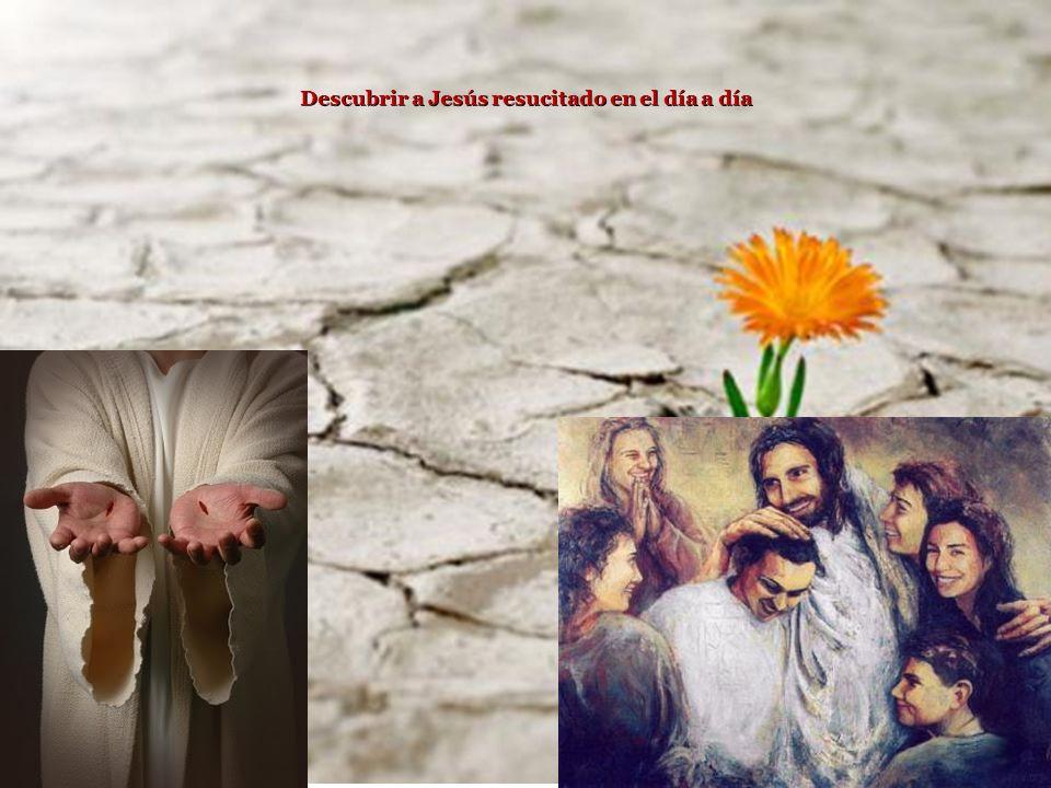 Descubrir a Jesús resucitado en el día a día
