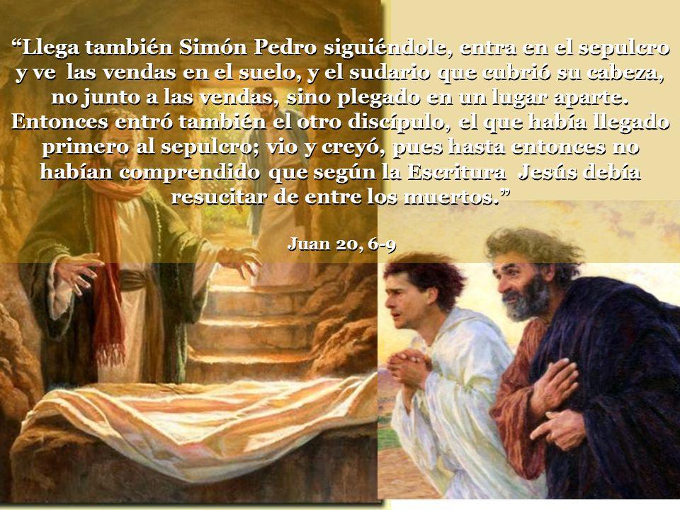 Llega también Simón Pedro siguiéndole, entra en el sepulcro y ve las vendas en el suelo, y el sudario que cubrió su cabeza, no junto a las vendas, sino plegado en un lugar aparte.