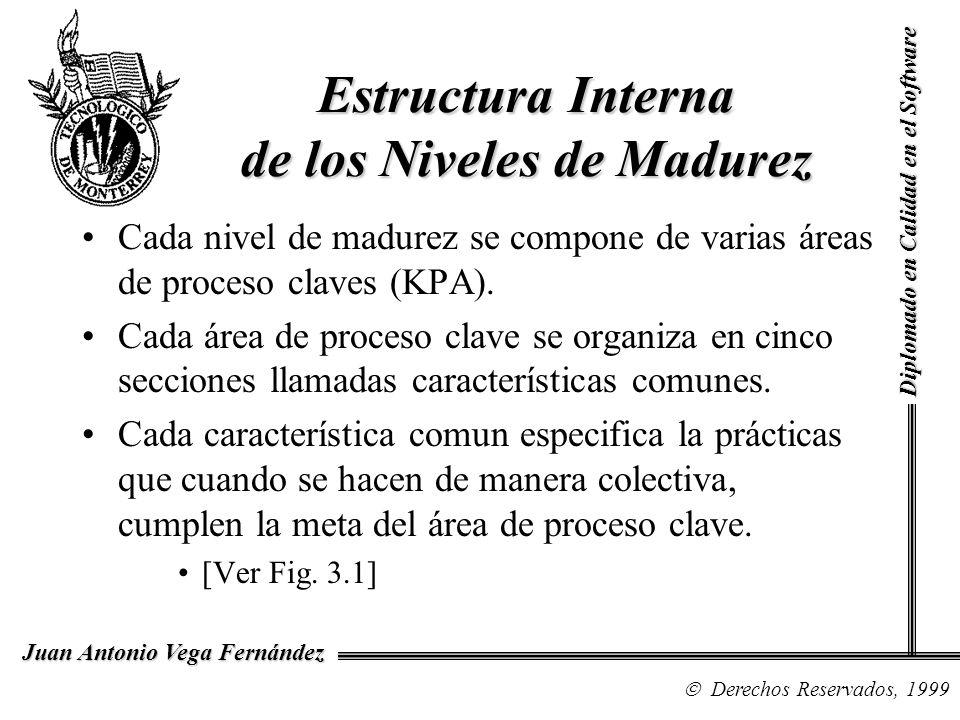 Estructura Interna de los Niveles de Madurez
