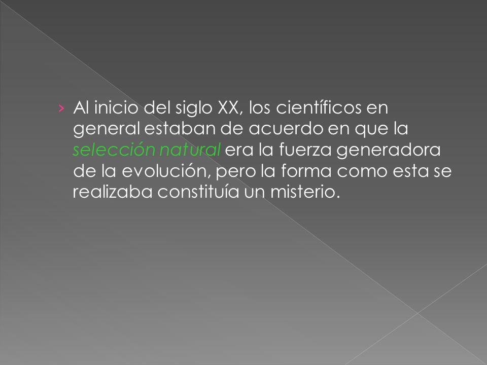 Al inicio del siglo XX, los científicos en general estaban de acuerdo en que la selección natural era la fuerza generadora de la evolución, pero la forma como esta se realizaba constituía un misterio.