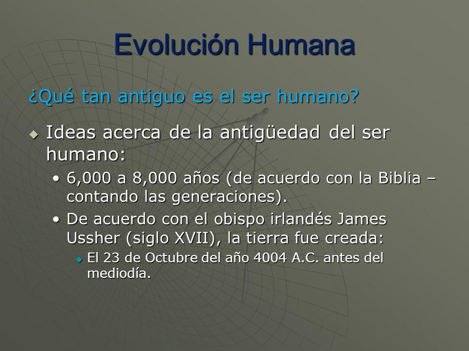 Evolución Humana ¿Qué tan antiguo es el ser humano