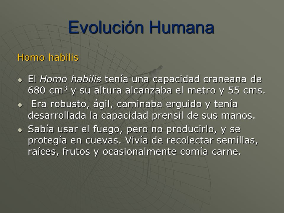 Evolución Humana Homo habilis