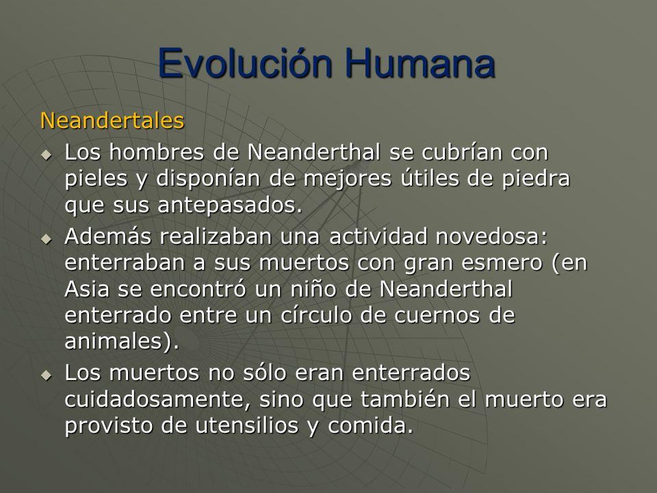 Evolución Humana Neandertales