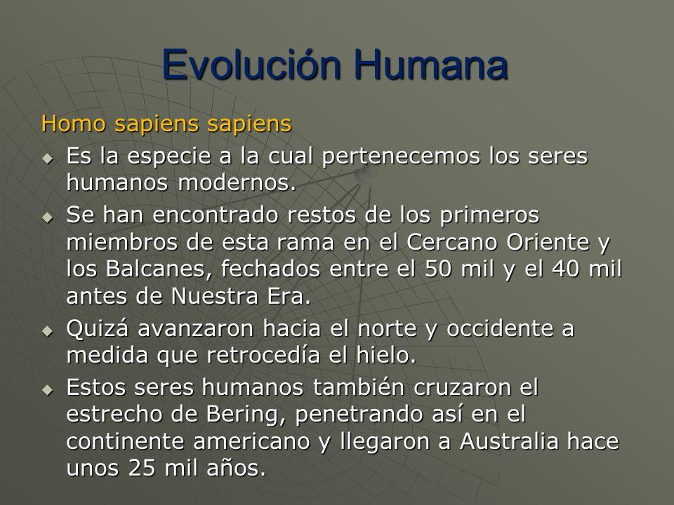 Evolución Humana Homo sapiens sapiens