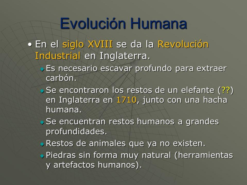 Evolución Humana En el siglo XVIII se da la Revolución Industrial en Inglaterra. Es necesario escavar profundo para extraer carbón.