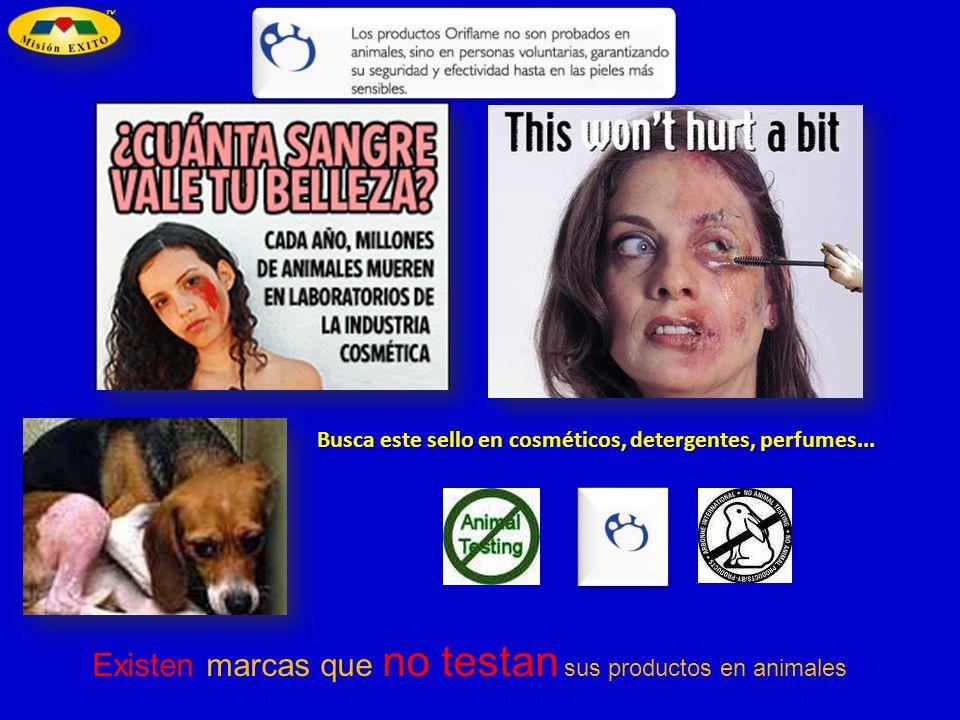 Existen marcas que no testan sus productos en animales