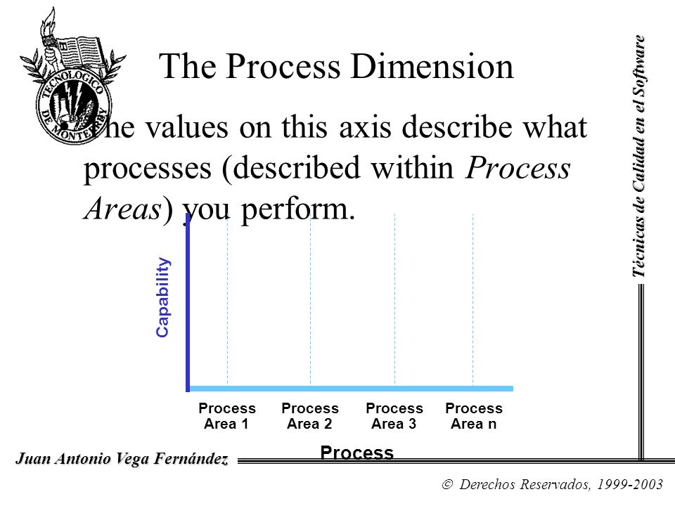 The Process Dimension The values on this axis describe what processes (described within Process Areas) you perform.