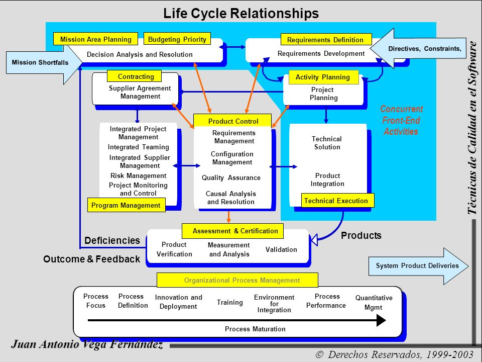 Life Cycle Relationships