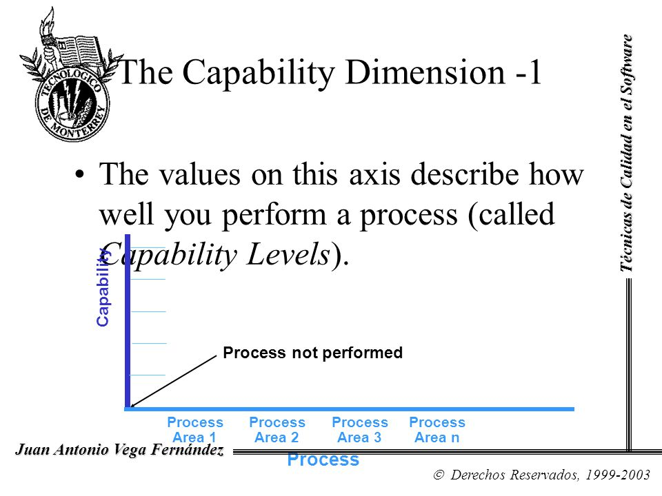 The Capability Dimension -1