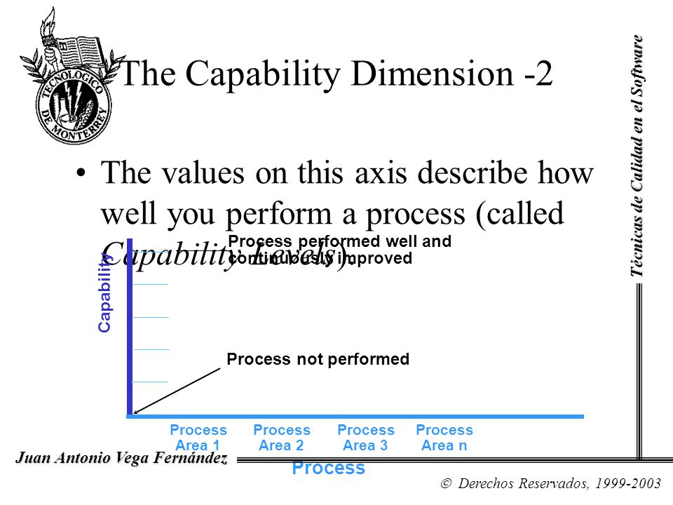 The Capability Dimension -2