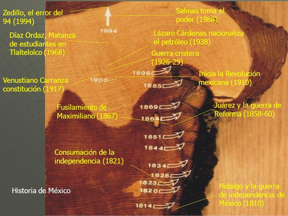 Salinas toma el poder (1988)
