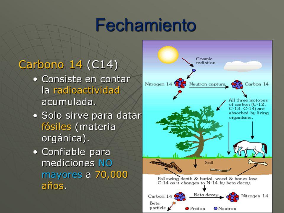 Fechamiento Carbono 14 (C14)