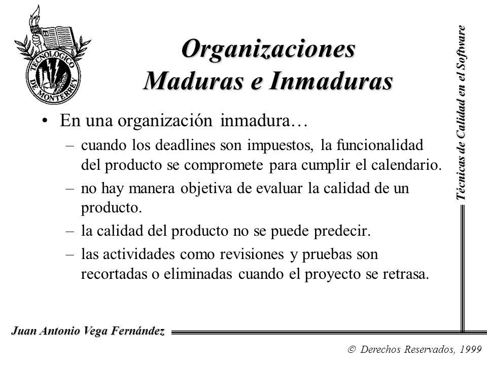 Organizaciones Maduras e Inmaduras