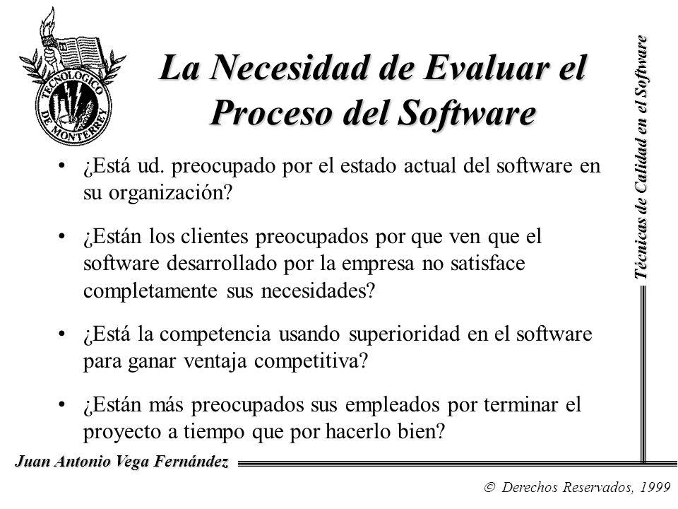 La Necesidad de Evaluar el Proceso del Software