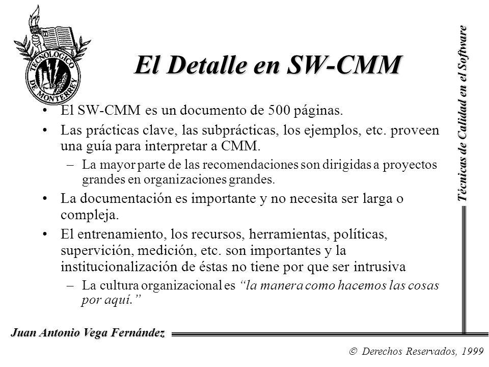 El Detalle en SW-CMM El SW-CMM es un documento de 500 páginas.