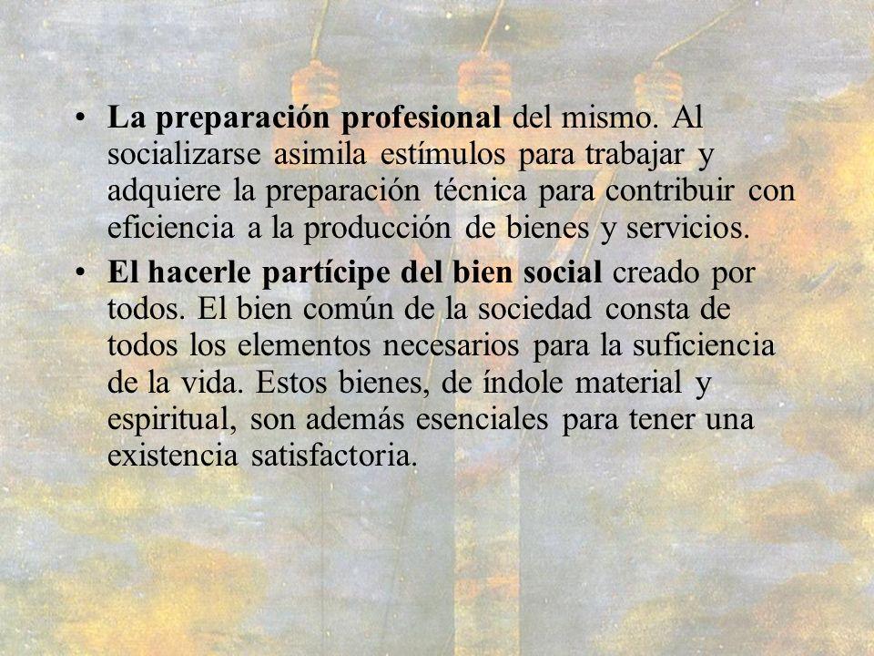 La preparación profesional del mismo