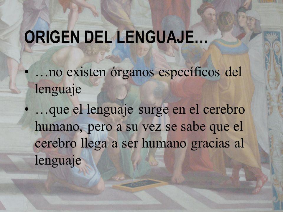 ORIGEN DEL LENGUAJE… …no existen órganos específicos del lenguaje