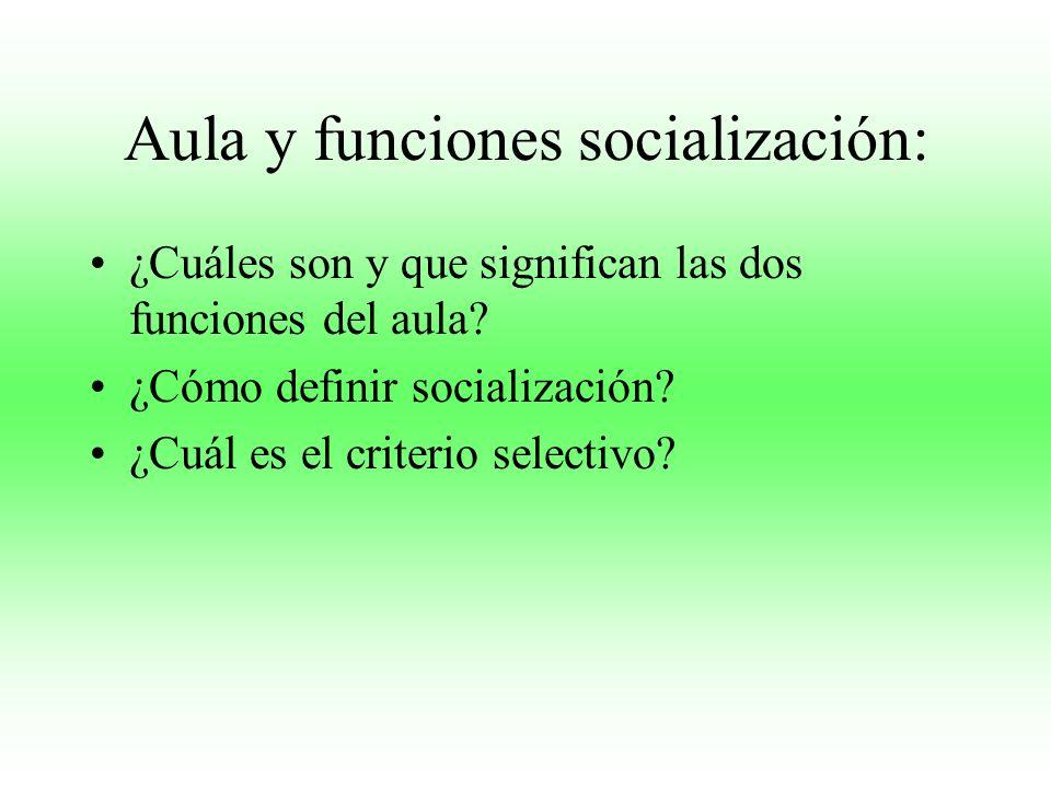 Aula y funciones socialización: