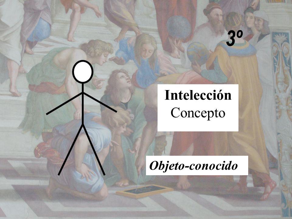 3º Intelección Concepto Objeto-conocido
