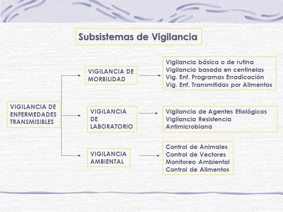 Subsistemas de Vigilancia