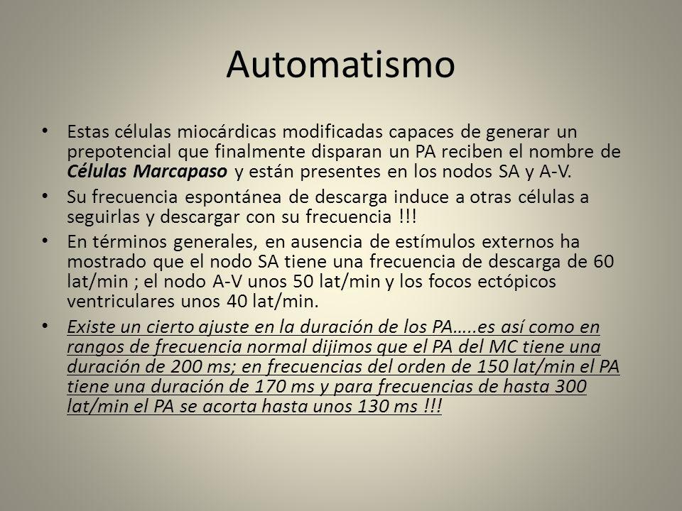 Automatismo