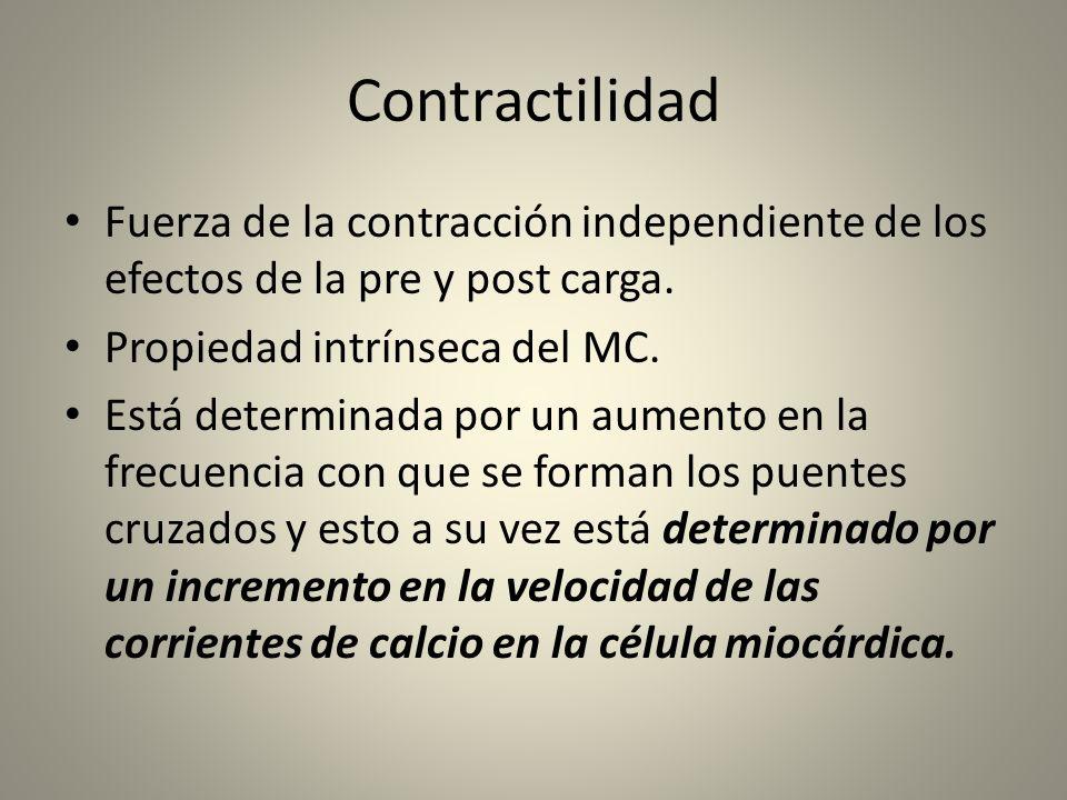 Contractilidad Fuerza de la contracción independiente de los efectos de la pre y post carga. Propiedad intrínseca del MC.