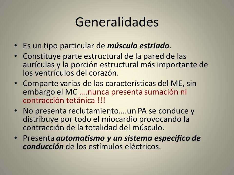 Generalidades Es un tipo particular de músculo estriado.