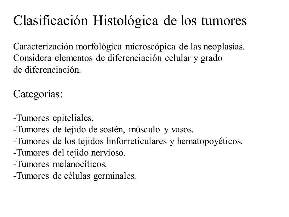 Clasificación Histológica de los tumores