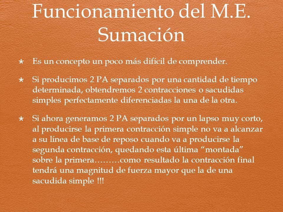 Funcionamiento del M.E. Sumación