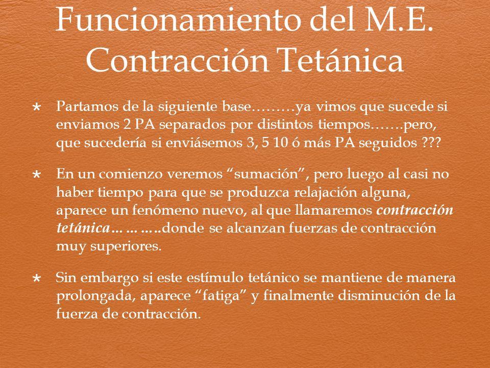 Funcionamiento del M.E. Contracción Tetánica