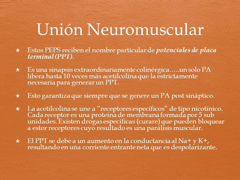 Unión Neuromuscular Estos PEPS reciben el nombre particular de potenciales de placa terminal (PPT).
