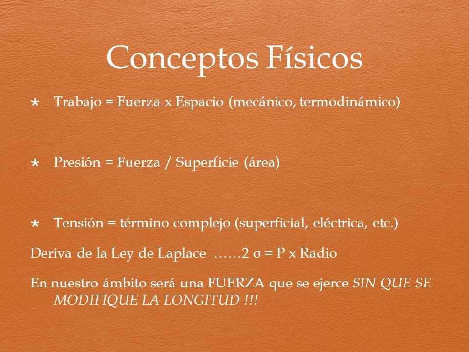 Conceptos Físicos Trabajo = Fuerza x Espacio (mecánico, termodinámico)