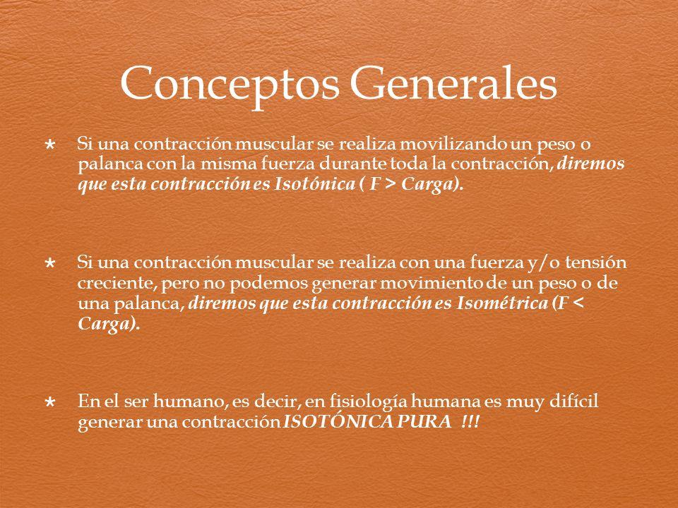 Conceptos Generales