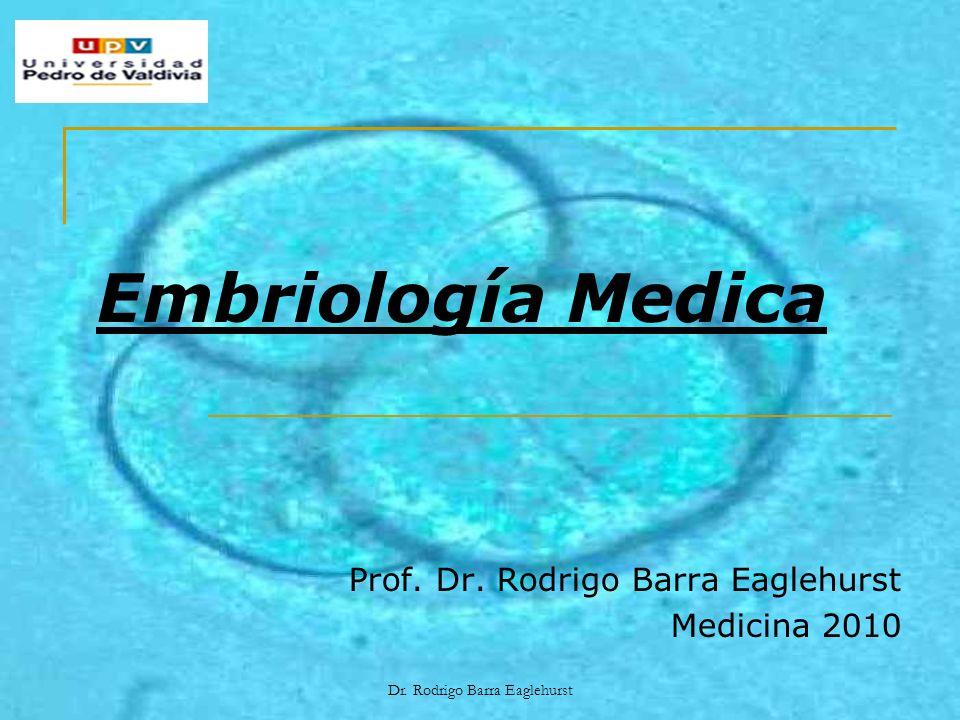Prof. Dr. Rodrigo Barra Eaglehurst Medicina 2010