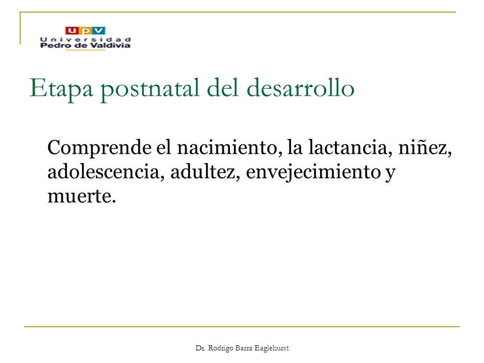 Etapa postnatal del desarrollo